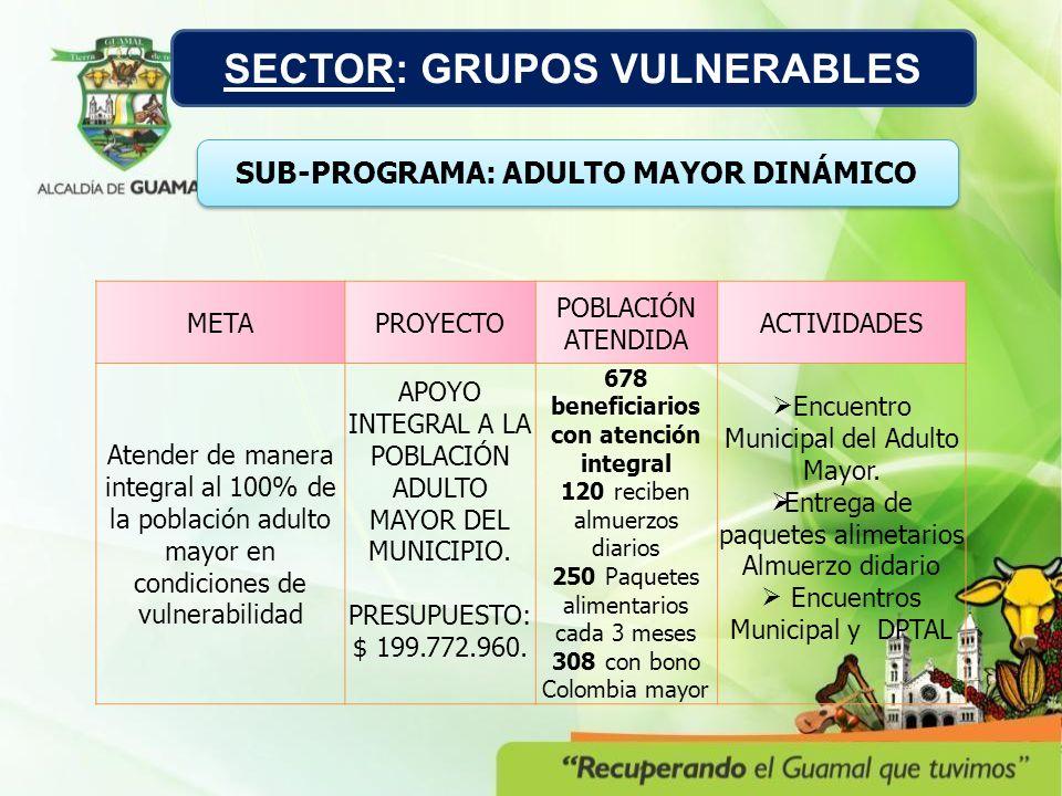 METAPROYECTO POBLACIÓN ATENDIDA ACTIVIDADES Atender de manera integral al 100% de la población adulto mayor en condiciones de vulnerabilidad APOYO INT
