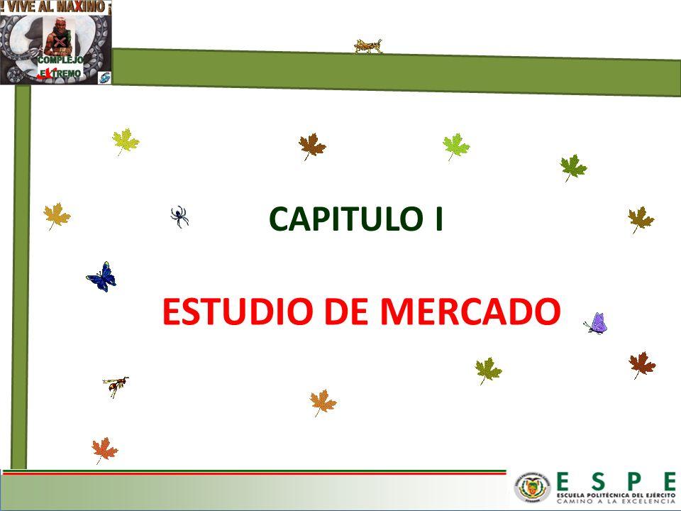 ESTUDIO DE MERCADO CAPITULO I