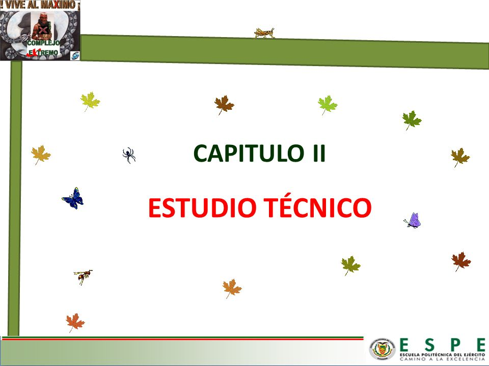 ESTUDIO TÉCNICO CAPITULO II