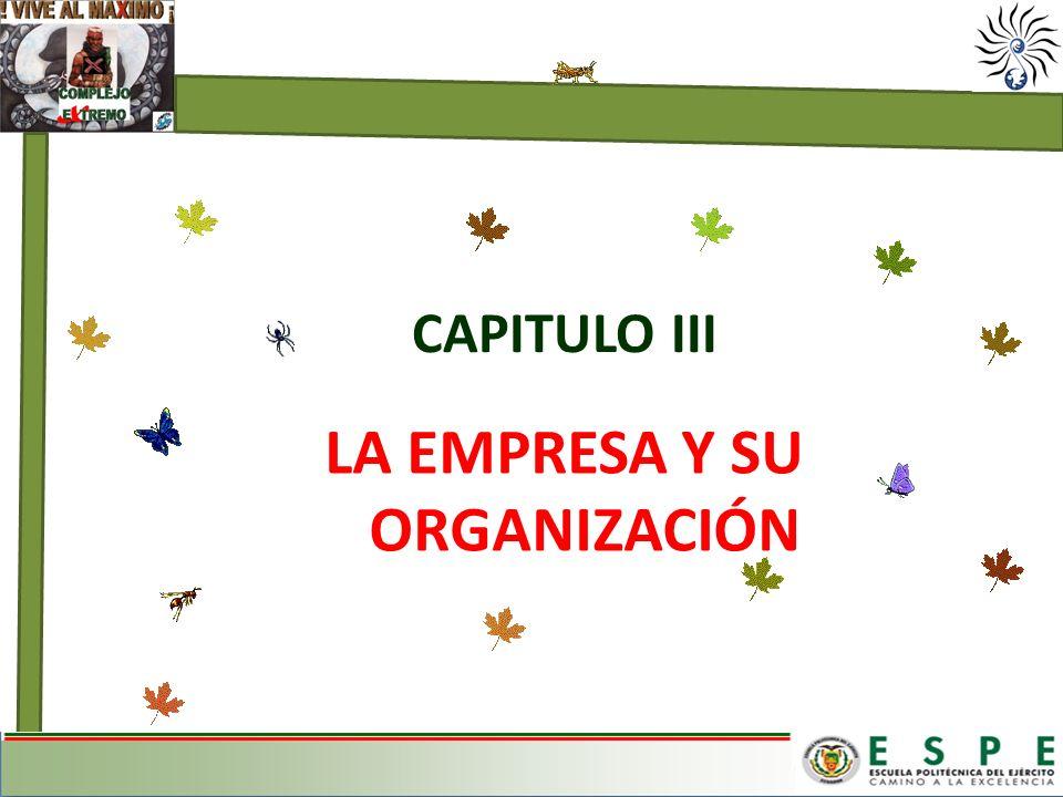 LA EMPRESA Y SU ORGANIZACIÓN CAPITULO III