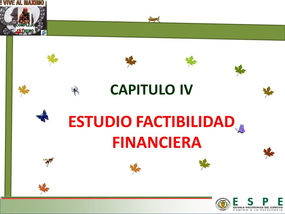 ESTUDIO FACTIBILIDAD FINANCIERA CAPITULO IV