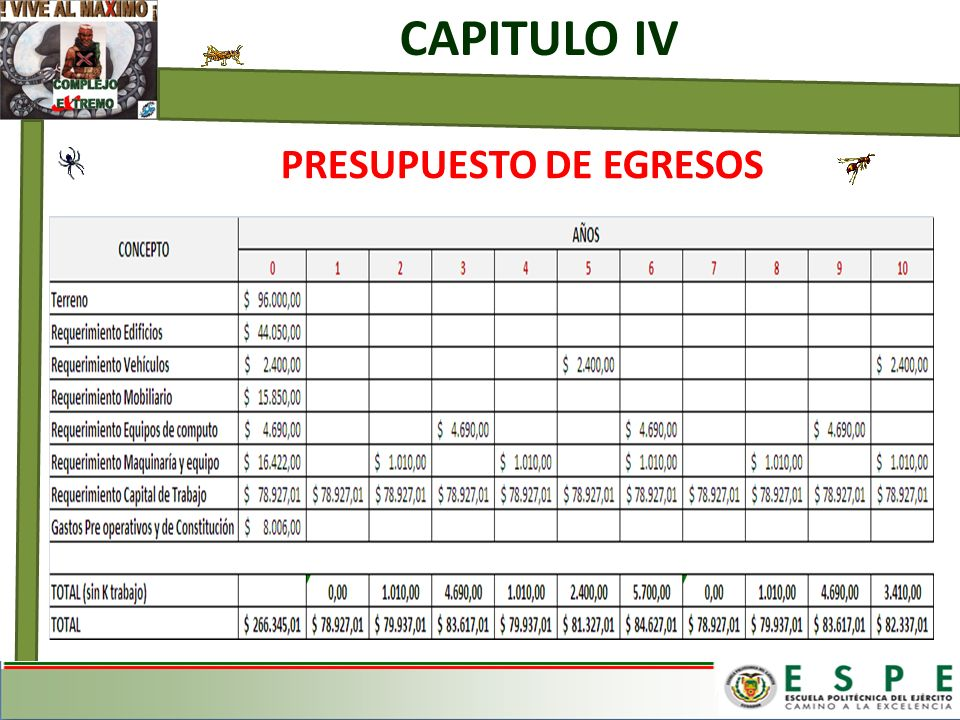 CAPITULO IV PRESUPUESTO DE EGRESOS