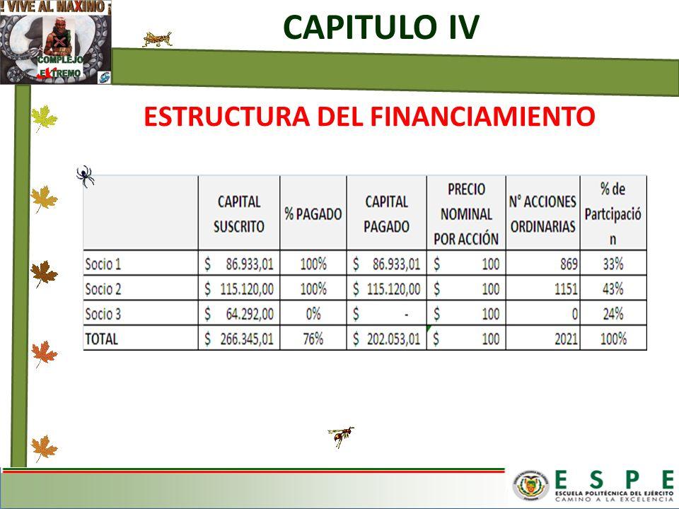 CAPITULO IV ESTRUCTURA DEL FINANCIAMIENTO
