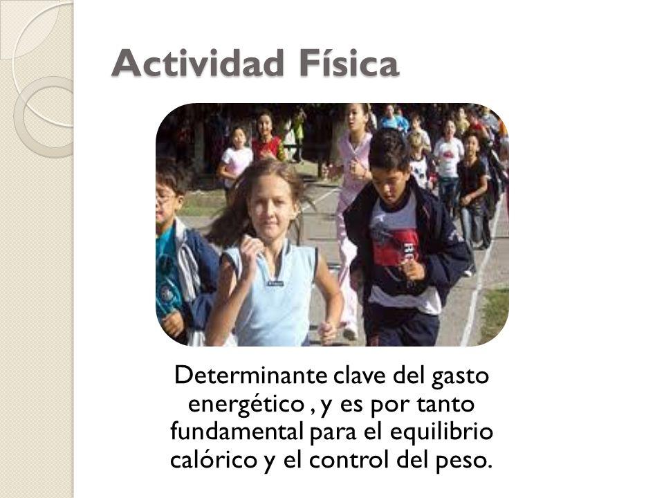 Actividad Física: consiste en… Paseos caminando o en bicicleta Actividades recreativas o de ocio, desplazamientos Actividad laboral Actividades ocupacionales Tareas domésticas, juegos, deportes o ejercicios programados en el contexto de las actividades diarias, familiares y comunitarias Además