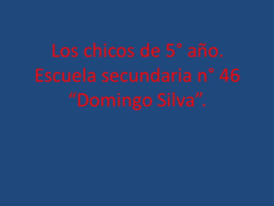 Los chicos de 5° año. Escuela secundaria n° 46 Domingo Silva.