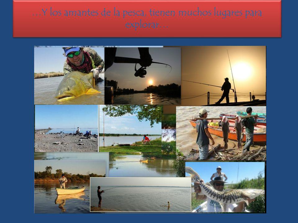 …Y los amantes de la pesca, tienen muchos lugares para explorar…