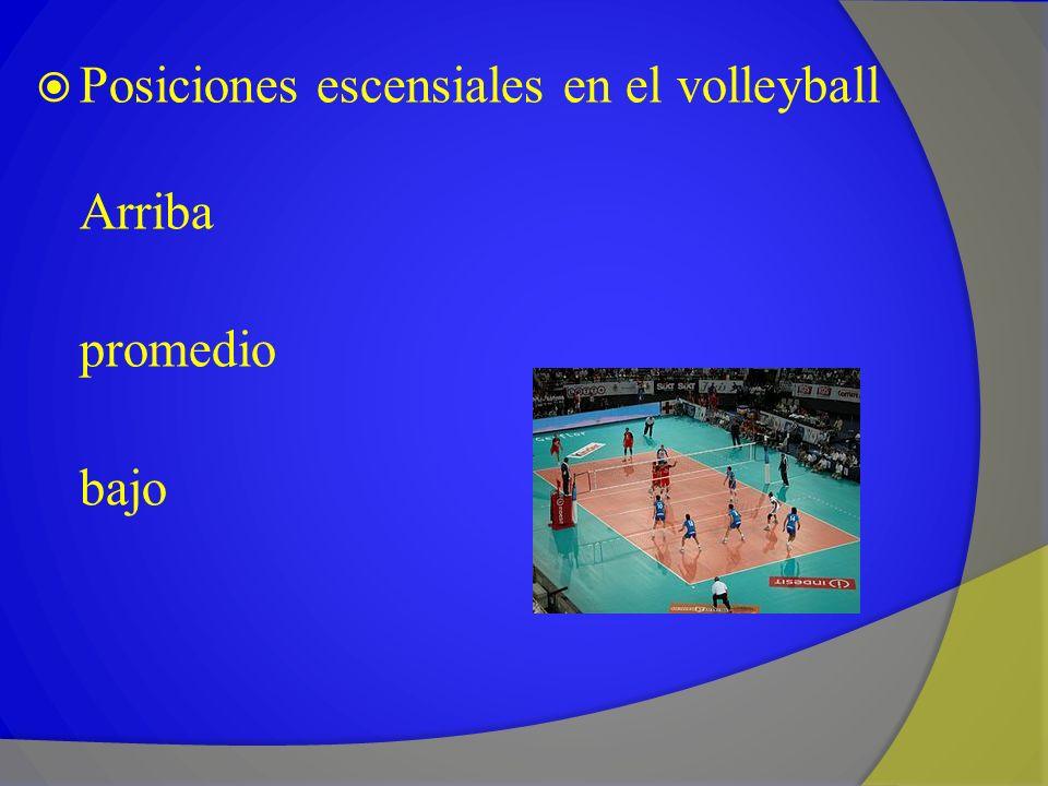 Posiciones escensiales en el volleyball Arriba promedio bajo