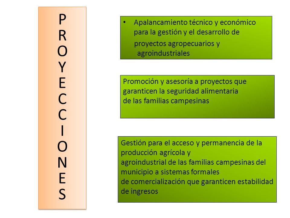 Apalancamiento técnico y económico para la gestión y el desarrollo de proyectos agropecuarios y agroindustriales PROYECCIONESPROYECCIONES PROYECCIONES