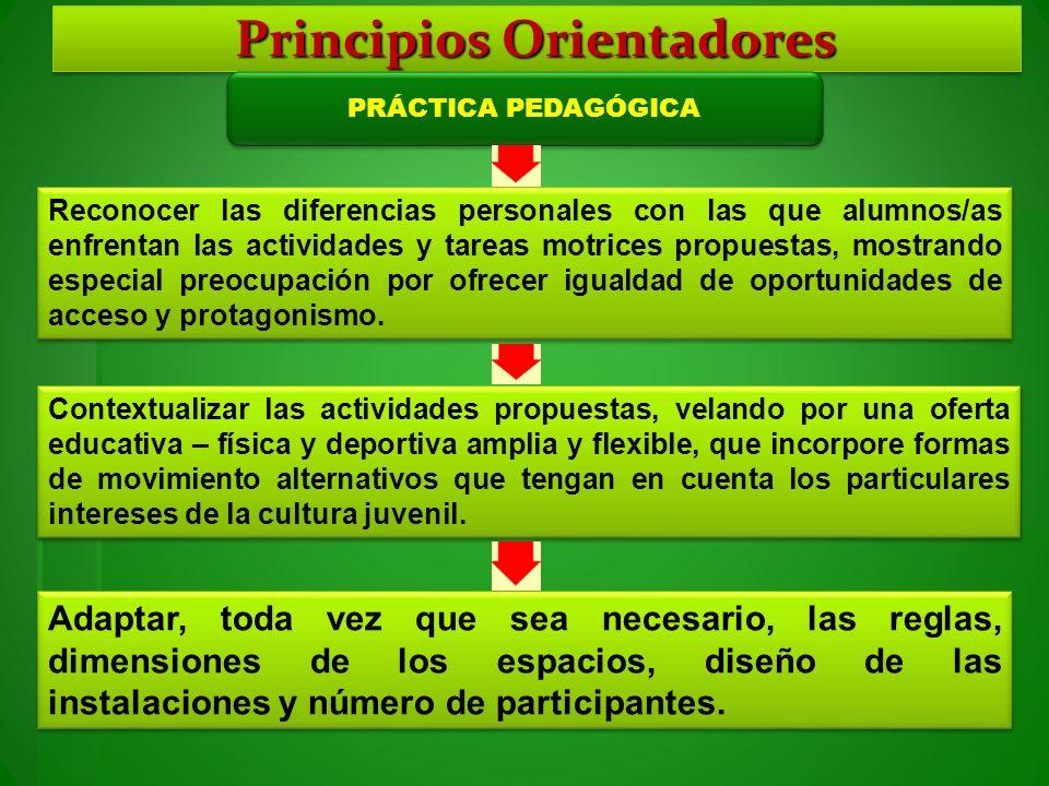 Principios Orientadores PRÁCTICA PEDAGÓGICA Reconocer las diferencias personales con las que alumnos/as enfrentan las actividades y tareas motrices pr