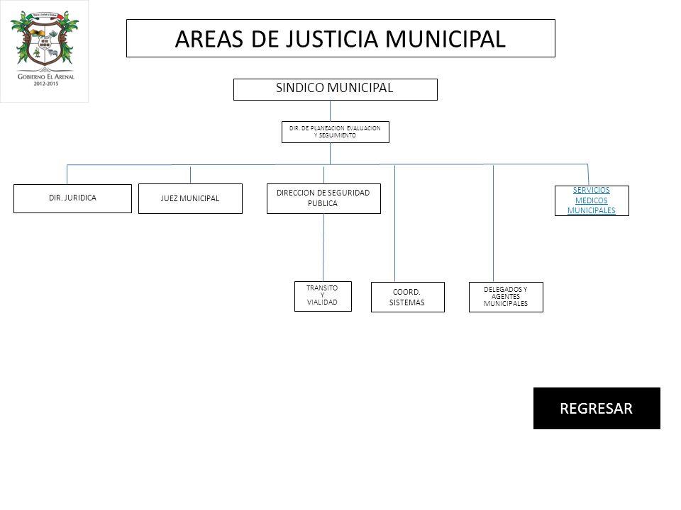 JUEZ MUNICIPAL DIR. JURIDICA COORD.