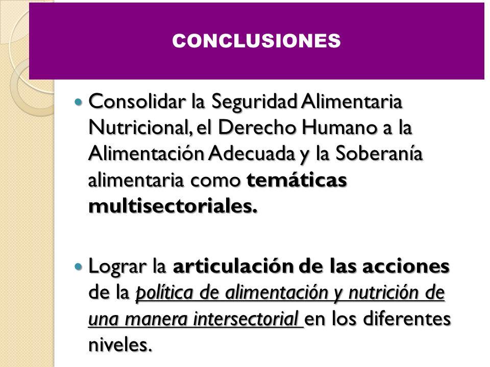 Consolidar la Seguridad Alimentaria Nutricional, el Derecho Humano a la Alimentación Adecuada y la Soberanía alimentaria como temáticas multisectorial