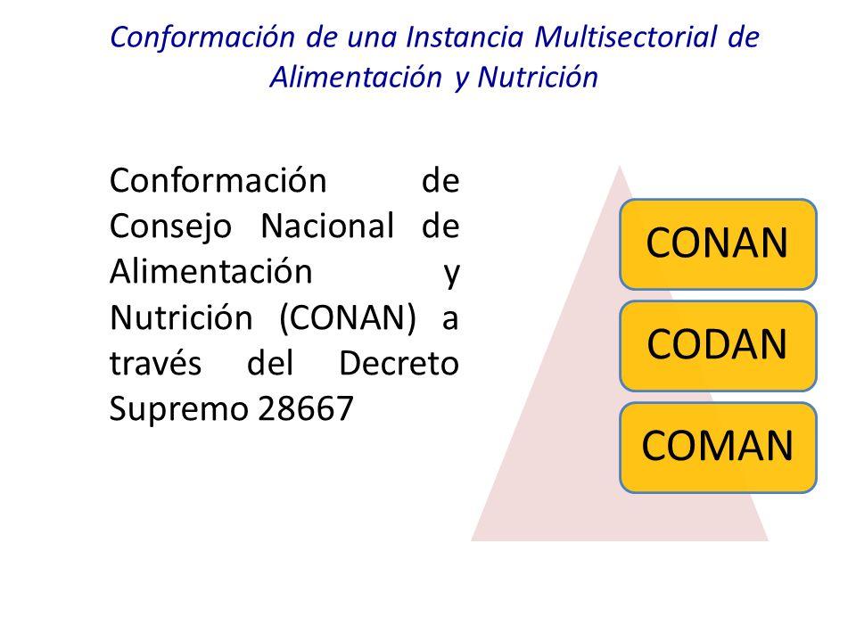 Conformación de una Instancia Multisectorial de Alimentación y Nutrición Conformación de Consejo Nacional de Alimentación y Nutrición (CONAN) a través