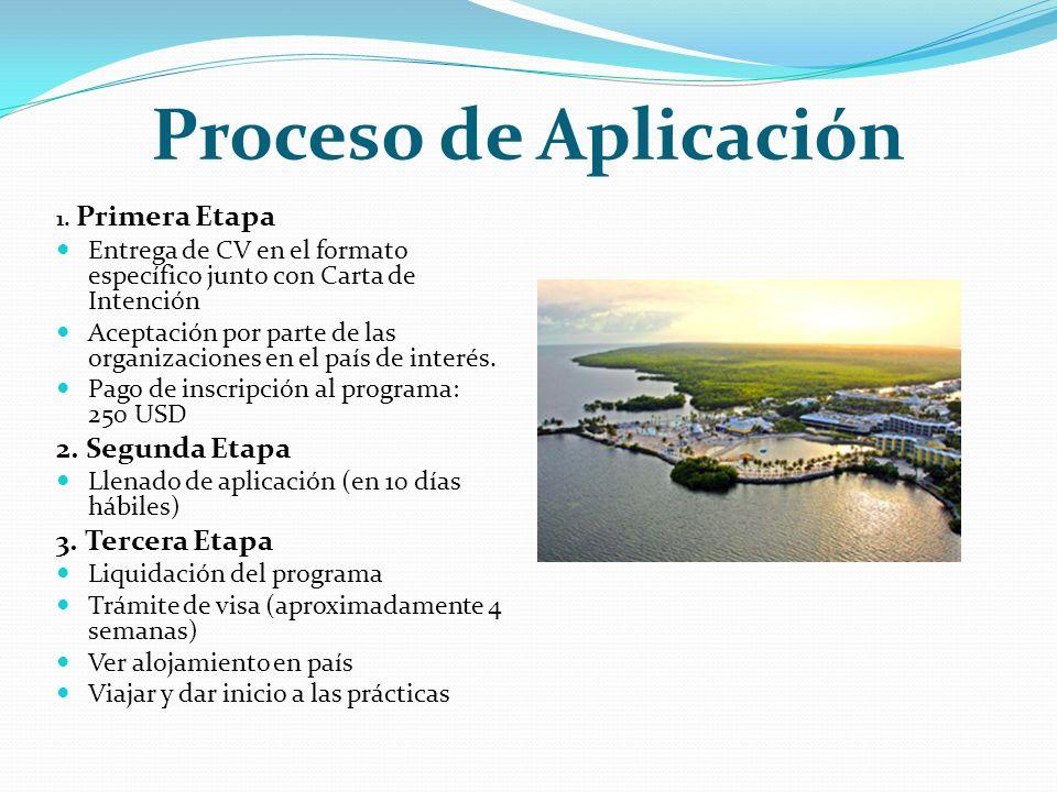 Proceso de Aplicación 1.