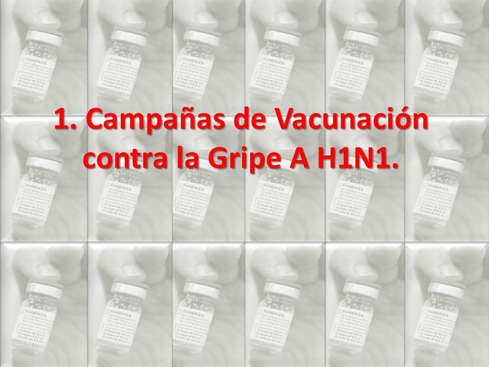 1. Campañas de Vacunación contra la Gripe A H1N1.