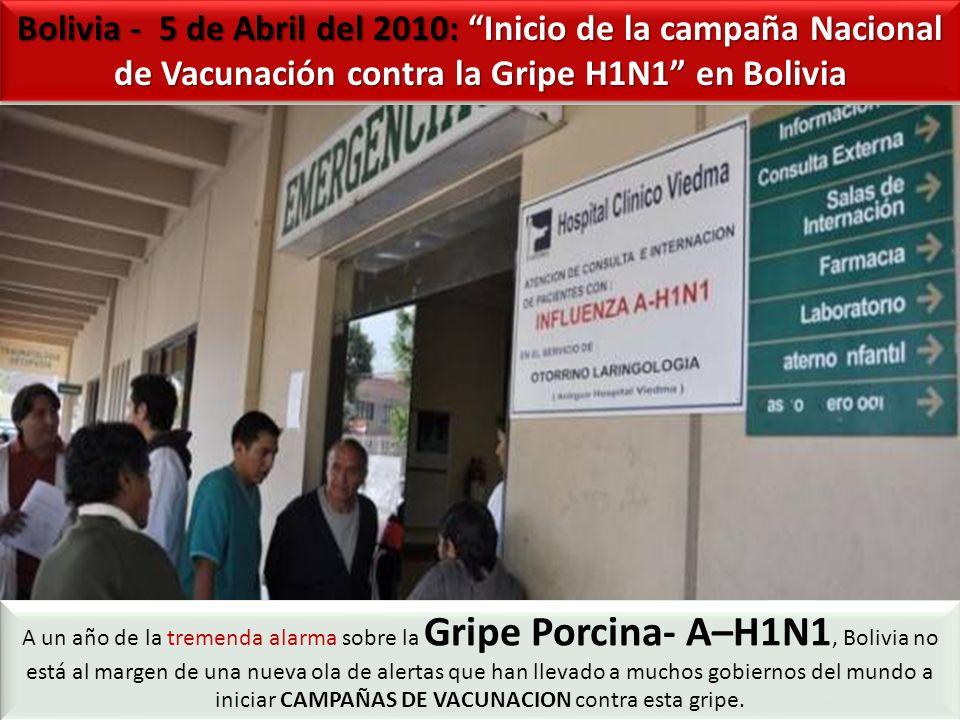 Bolivia - 5 de Abril del 2010: Inicio de la campaña Nacional de Vacunación contra la Gripe H1N1 en Bolivia A un año de la tremenda alarma sobre la Gripe Porcina- A–H1N1, Bolivia no está al margen de una nueva ola de alertas que han llevado a muchos gobiernos del mundo a iniciar CAMPAÑAS DE VACUNACION contra esta gripe.