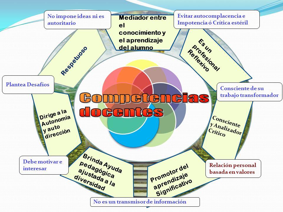 COMPETENCIA CONJUNTO DE CONOCIMIENTOS, HABILIDADES, PROCEDIMIENTOS, Y ACTITUDES MEDIANTE LAS CUALES, LOS INDIVIDUOS PUEDAN RESOLVER SITUACIONES.