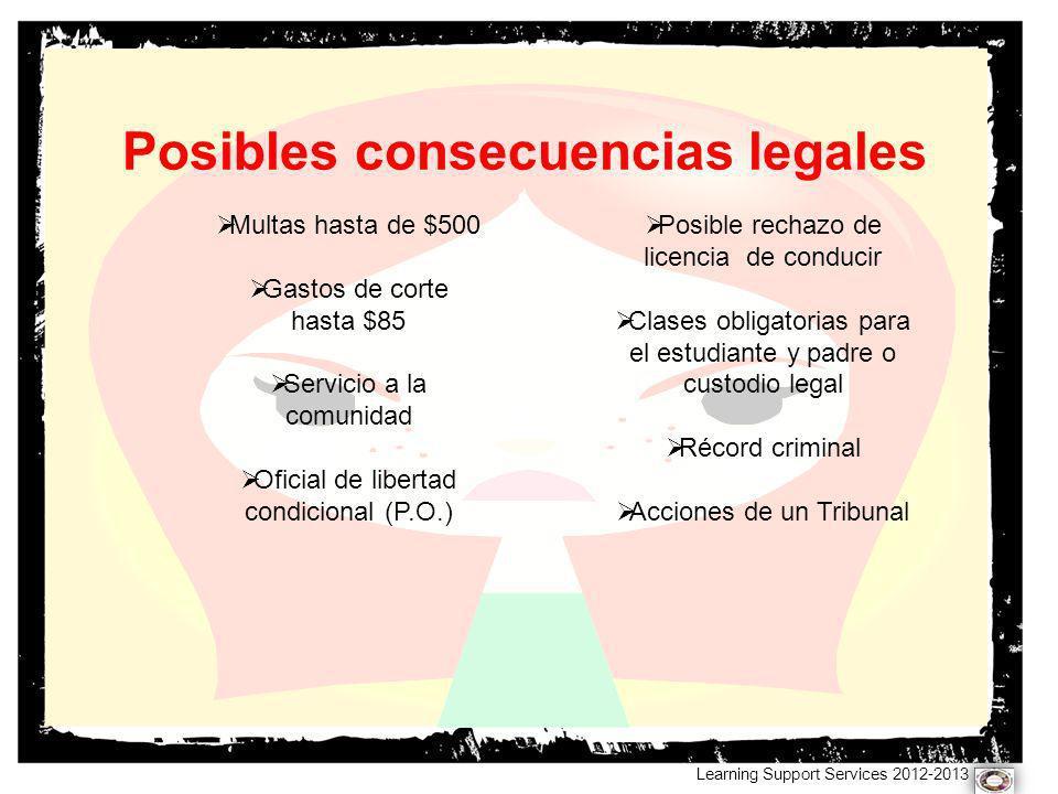 Posibles consecuencias legales Learning Support Services 2012-2013 Multas hasta de $500 Gastos de corte hasta $85 Servicio a la comunidad Oficial de l