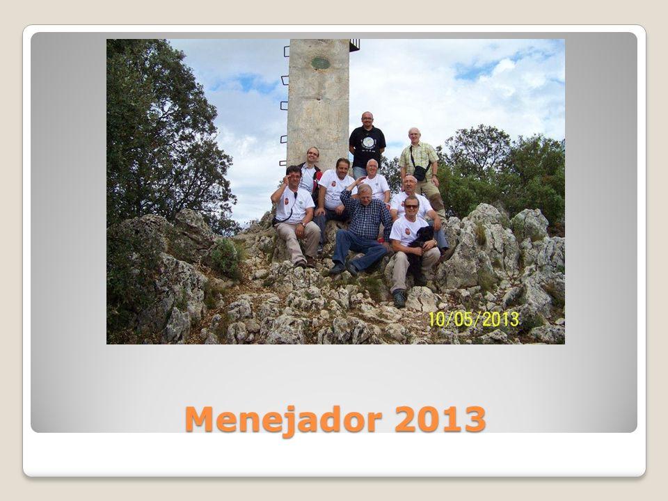 Menejador 2013