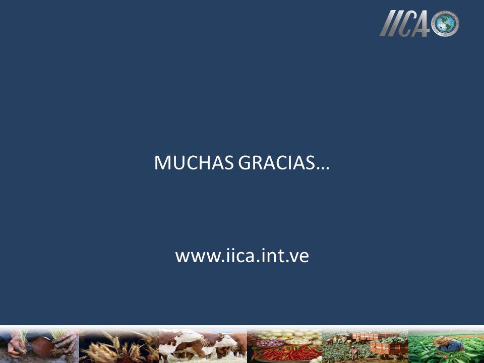MUCHAS GRACIAS… www.iica.int.ve