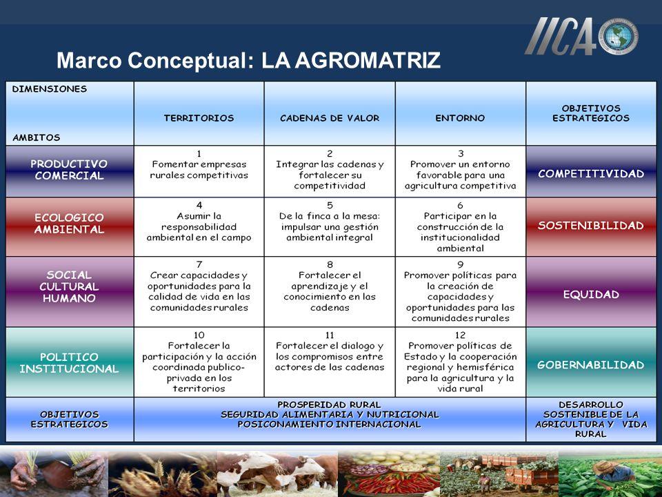Dimensión de la Nueva Agricultura ENFOQUE TERRITORIALENFOQUE CONVENCIONAL POLÍTICAS ORDENAMIENTO TERRITORIAL.POLÍTICAS DE DESCENTRALIZACIÓN Y REFORMA DEL SECTOR PÚBLICO.