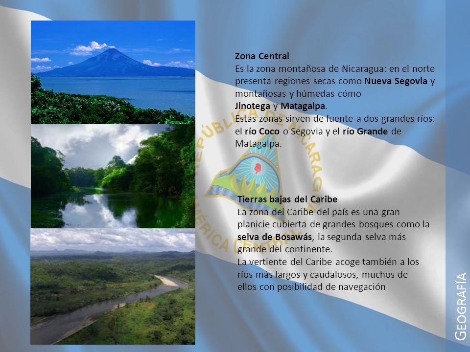G EOGRAFÍA Zona Central Es la zona montañosa de Nicaragua: en el norte presenta regiones secas como Nueva Segovia y montañosas y húmedas cómo Jinotega