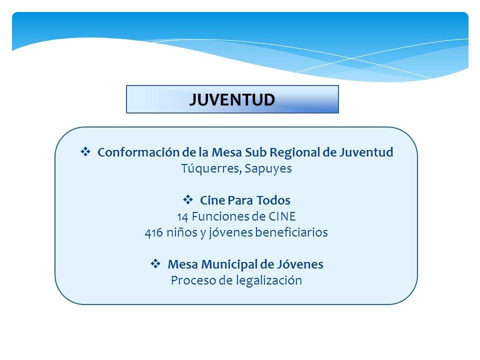 Conformación de la Mesa Sub Regional de Juventud Túquerres, Sapuyes Cine Para Todos 14 Funciones de CINE 416 niños y jóvenes beneficiarios Mesa Munici