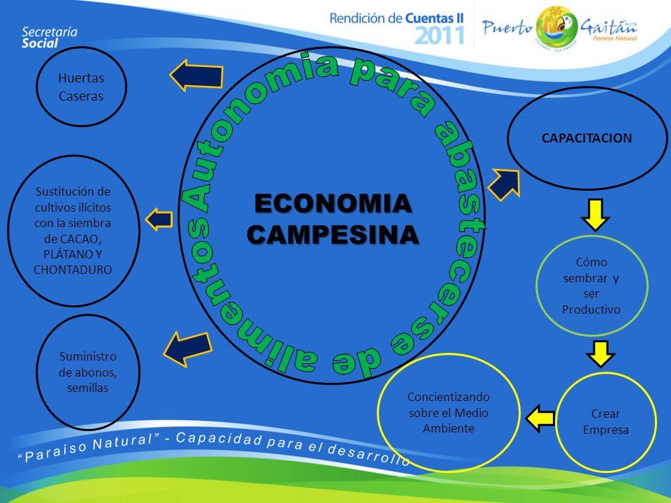 Huertas Caseras Suministro de abonos, semillas CAPACITACION Crear Empresa Cómo sembrar y ser Productivo Concientizando sobre el Medio Ambiente ECONOMI