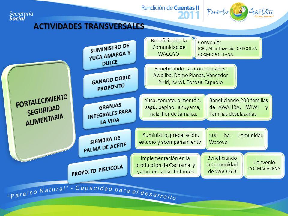 ACTIVIDADES TRANSVERSALES Beneficiando la Comunidad de WACOYO Convenio: ICBF, Aliar Fazenda, CEPCOLSA COSMOPOLITANA Yuca, tomate, pimentón, sagú, pepi