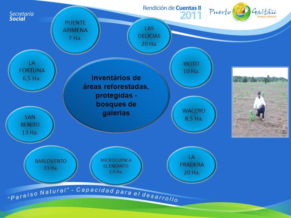 Inventários de áreas reforestadas, protegidas - bosques de galerias PUENTE ARIMENA 7 Ha. SAN BENITO 13 Ha. WACOYO 8,5 Ha. IBOTO 10 Ha. LA PRADERA 20 H