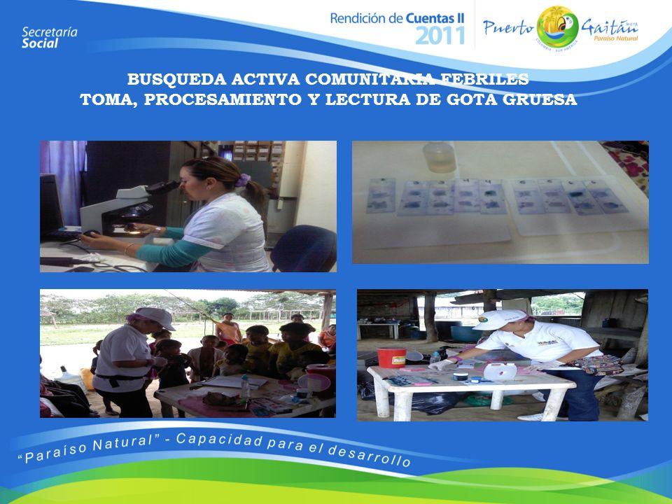 BUSQUEDA ACTIVA COMUNITARIA FEBRILES TOMA, PROCESAMIENTO Y LECTURA DE GOTA GRUESA