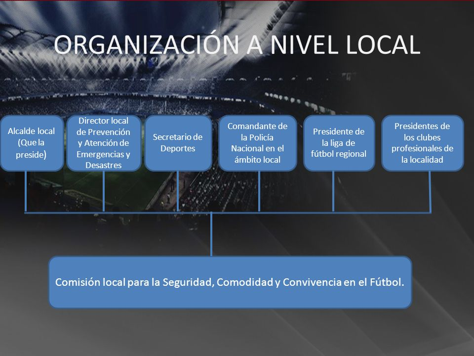 Director local de Prevención y Atención de Emergencias y Desastres Comisión local para la Seguridad, Comodidad y Convivencia en el Fútbol. Secretario