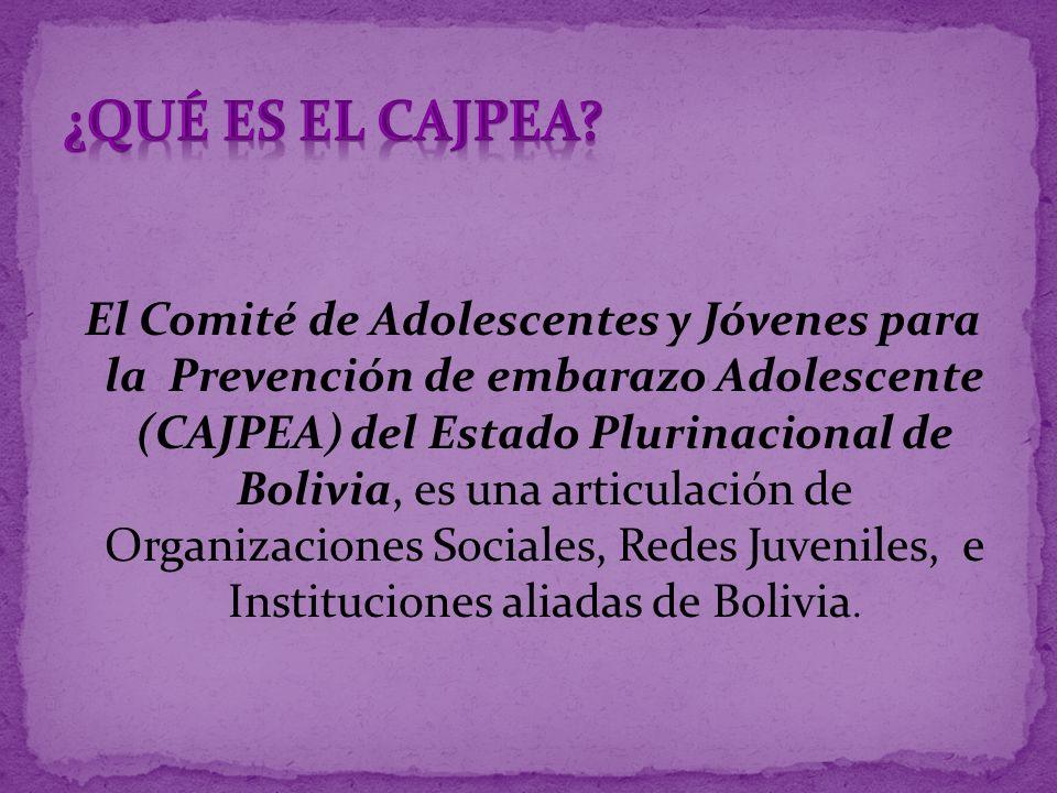 El Comité de Adolescentes y Jóvenes para la Prevención de embarazo Adolescente (CAJPEA) del Estado Plurinacional de Bolivia, es una articulación de Or
