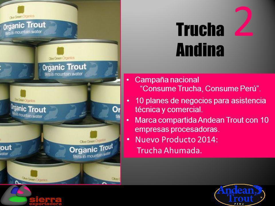 Trucha Andina 2 Campaña nacional Consume Trucha, Consume Perú. 10 planes de negocios para asistencia técnica y comercial. Marca compartida Andean Trou