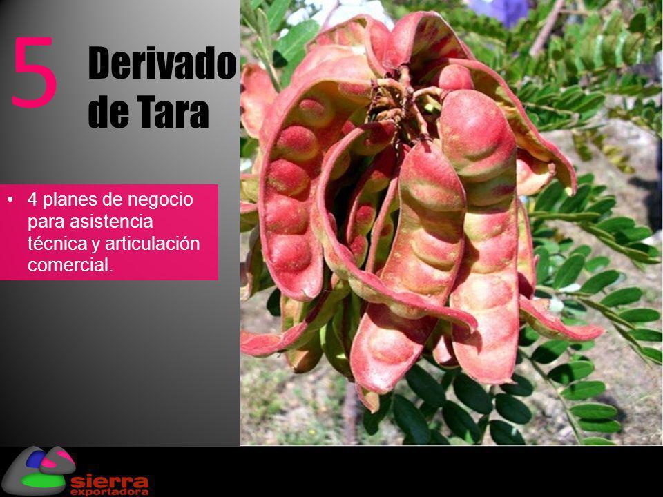 Derivado de Tara 5 4 planes de negocio para asistencia técnica y articulación comercial.