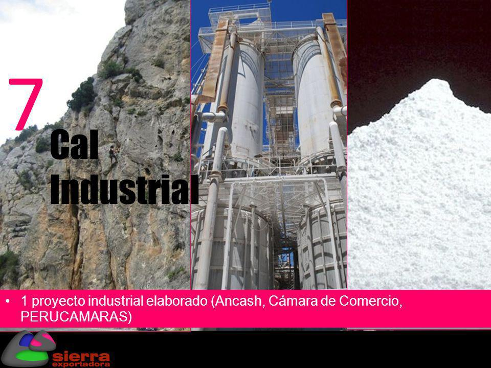 Cal Industrial 7 1 proyecto industrial elaborado (Ancash, Cámara de Comercio, PERUCAMARAS)