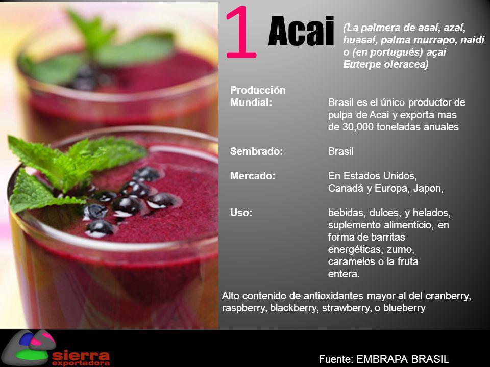 1 Acai Producción Mundial:Brasil es el único productor de pulpa de Acai y exporta mas de 30,000 toneladas anuales Sembrado: Brasil Mercado: En Estados