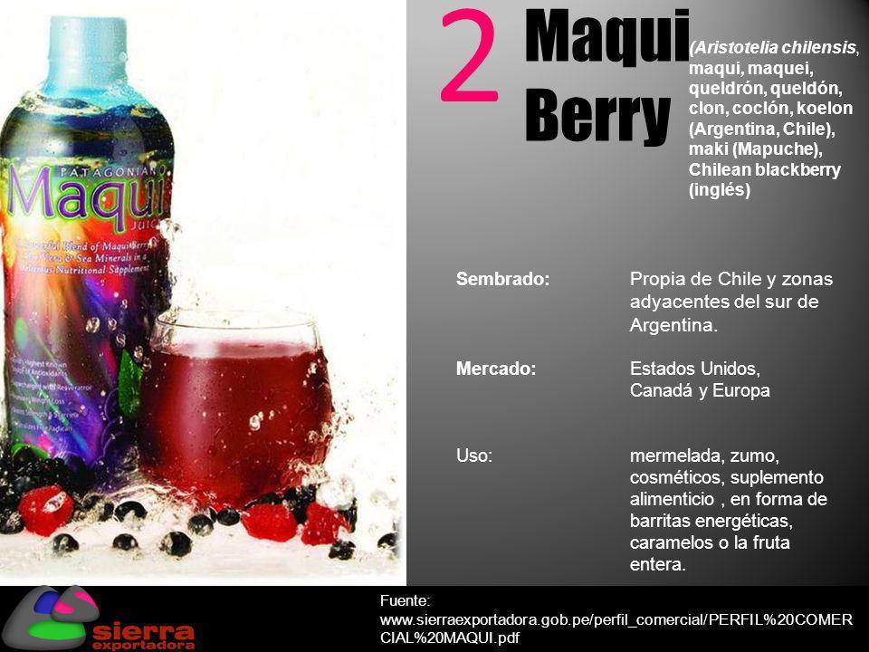 2 Maqui Berry (Aristotelia chilensis, maqui, maquei, queldrón, queldón, clon, coclón, koelon (Argentina, Chile), maki (Mapuche), Chilean blackberry (i