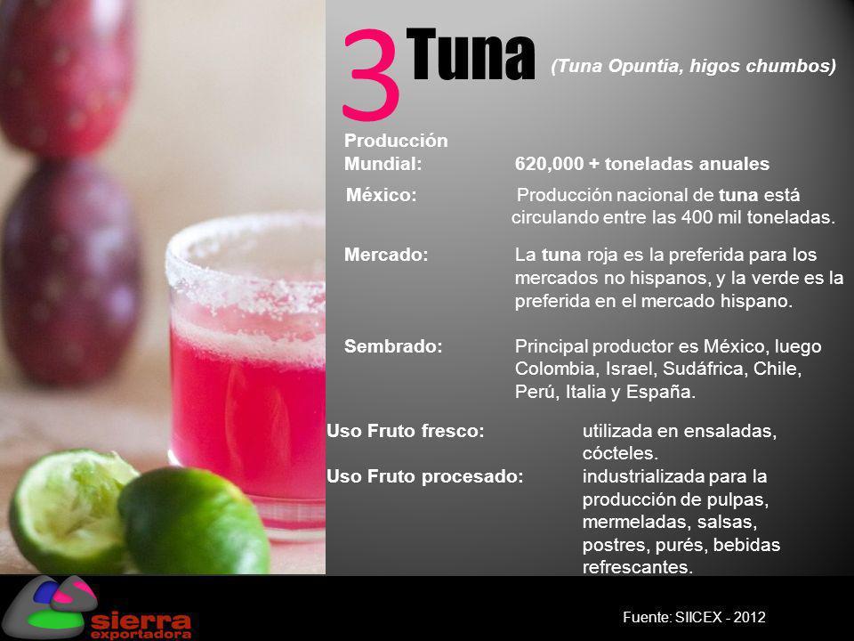 3 Tuna Producción Mundial: 620,000 + toneladas anuales Mercado: La tuna roja es la preferida para los mercados no hispanos, y la verde es la preferida