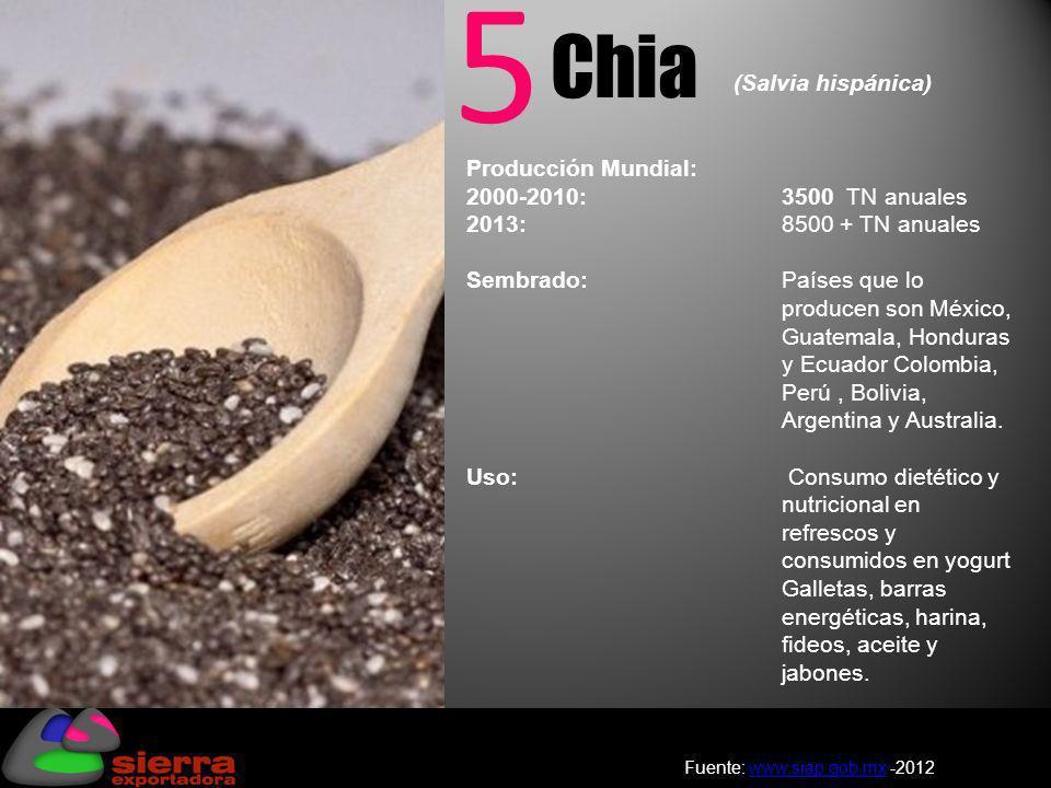 5 Chia Producción Mundial: 2000-2010: 3500 TN anuales 2013: 8500 + TN anuales Sembrado: Países que lo producen son México, Guatemala, Honduras y Ecuad