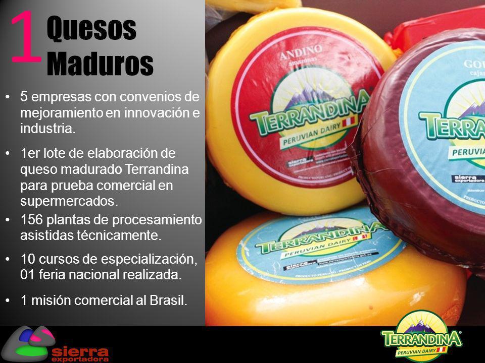 Quesos Maduros 1 156 plantas de procesamiento asistidas técnicamente. 10 cursos de especialización, 01 feria nacional realizada. 1 misión comercial al