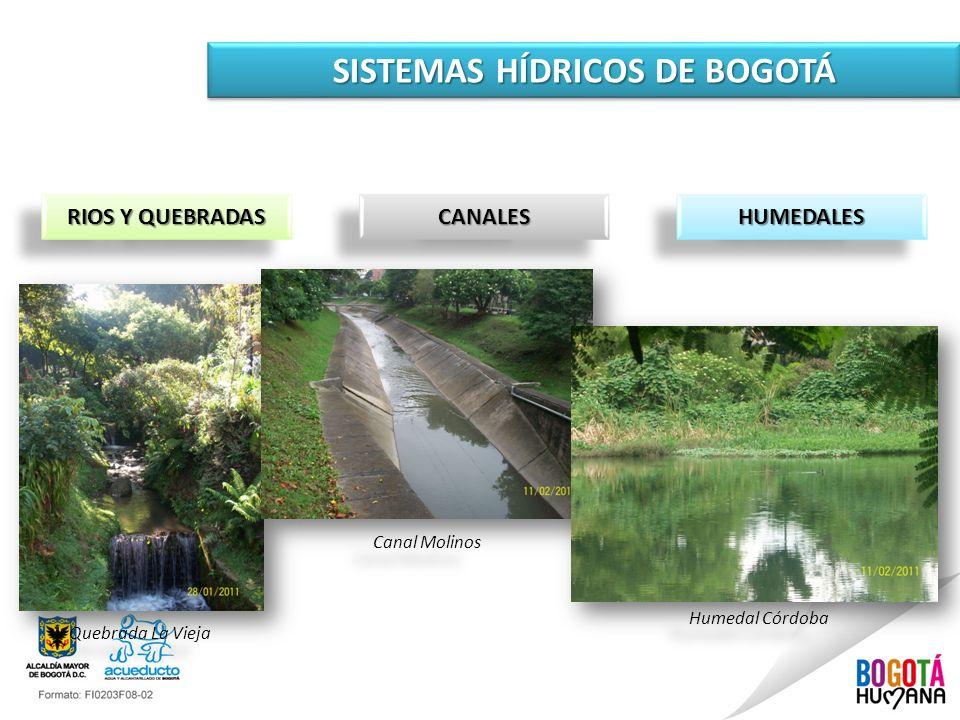 SISTEMAS HÍDRICOS DE BOGOTÁ CANALESCANALES RIOS Y QUEBRADAS HUMEDALESHUMEDALES Quebrada La Vieja Canal Molinos Humedal Córdoba