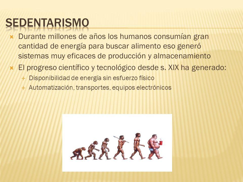 Durante millones de años los humanos consumían gran cantidad de energía para buscar alimento eso generó sistemas muy eficaces de producción y almacena