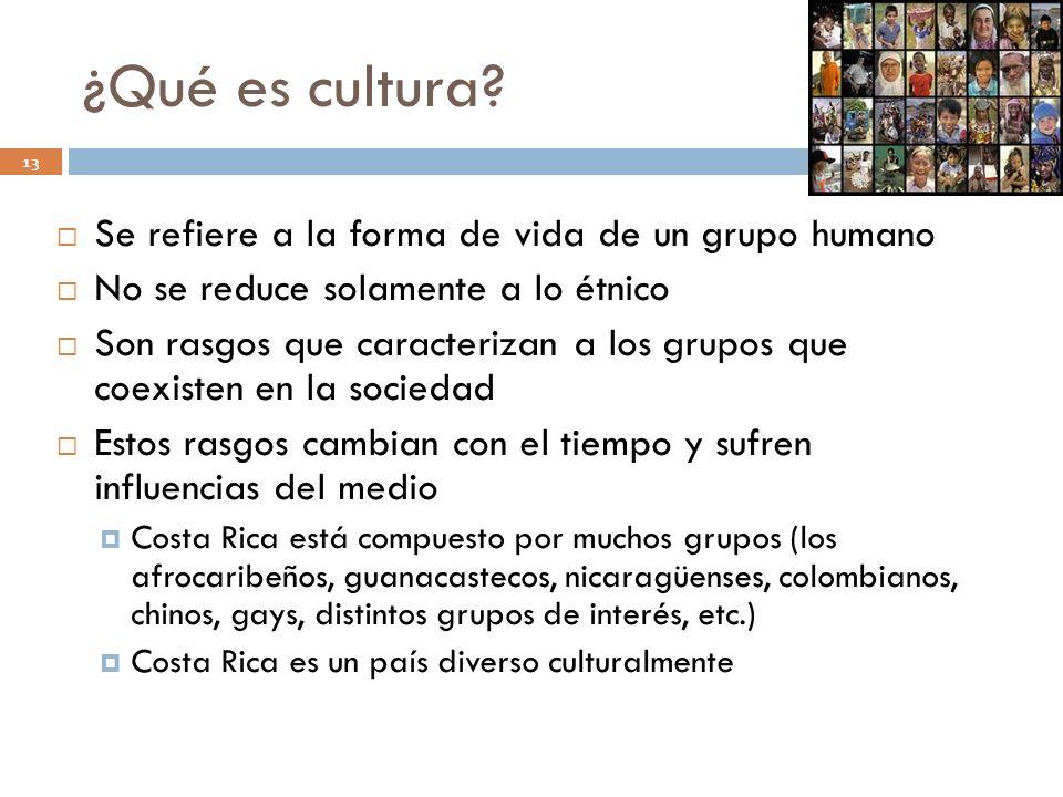 ¿Qué es cultura? 13 Se refiere a la forma de vida de un grupo humano No se reduce solamente a lo étnico Son rasgos que caracterizan a los grupos que c
