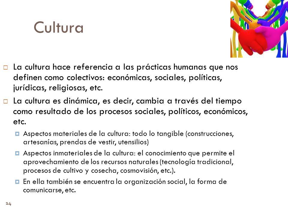 14 Cultura La cultura hace referencia a las prácticas humanas que nos definen como colectivos: económicas, sociales, políticas, jurídicas, religiosas,