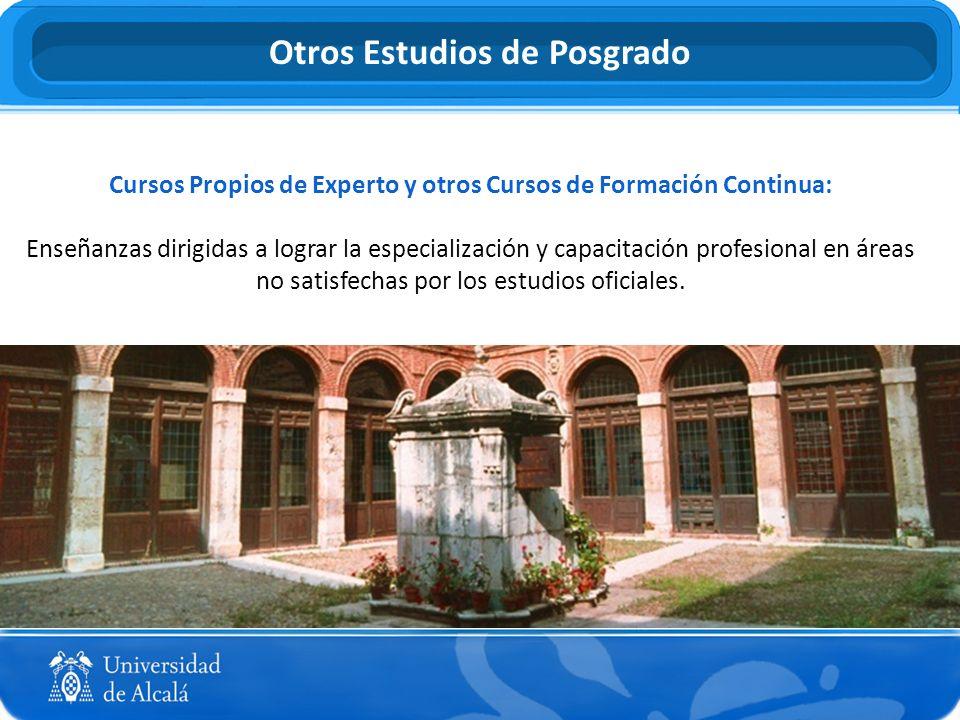 Cursos Propios de Experto y otros Cursos de Formación Continua: Enseñanzas dirigidas a lograr la especialización y capacitación profesional en áreas n