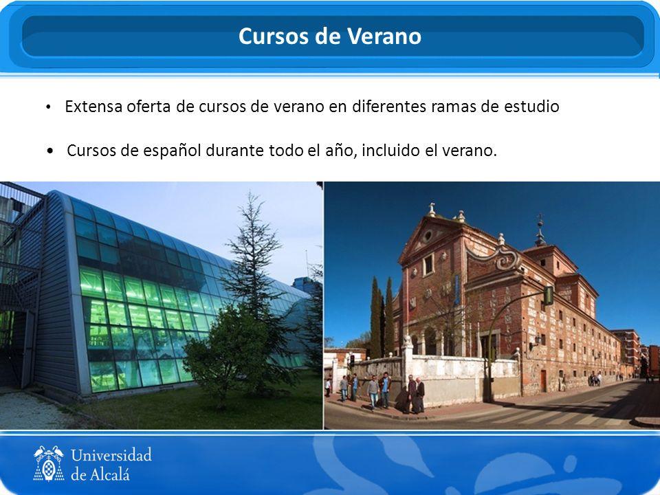 Extensa oferta de cursos de verano en diferentes ramas de estudio Cursos de español durante todo el año, incluido el verano. Cursos de Verano