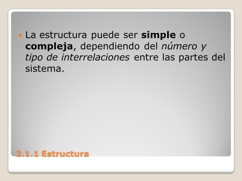 2.1.1 Estructura Los sistemas complejos involucran jerarquías que son niveles ordenados, partes, o elementos de subsistemas.