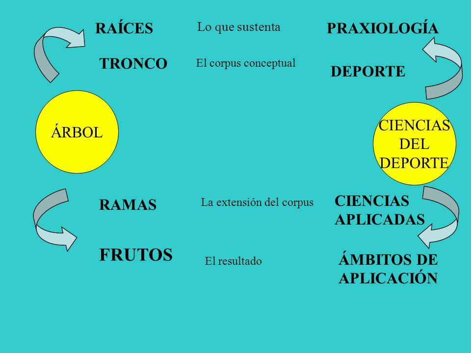 ÁRBOL CIENCIAS DEL DEPORTE RAÍCES TRONCO RAMAS FRUTOS PRAXIOLOGÍA DEPORTE CIENCIAS APLICADAS ÁMBITOS DE APLICACIÓN Lo que sustenta El corpus conceptual La extensión del corpus El resultado