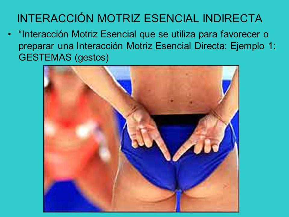INTERACCIÓN MOTRIZ ESENCIAL INDIRECTA Interacción Motriz Esencial que se utiliza para favorecer o preparar una Interacción Motriz Esencial Directa: Ejemplo 1: GESTEMAS (gestos)