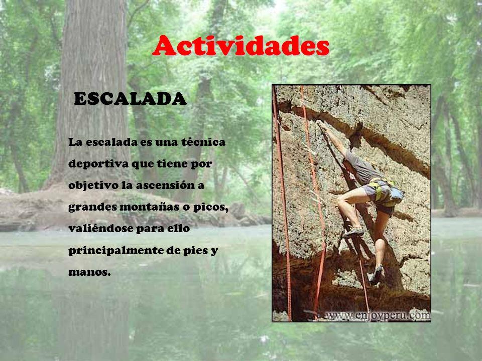 Actividades ESCALADA La escalada es una técnica deportiva que tiene por objetivo la ascensión a grandes montañas o picos, valiéndose para ello princip